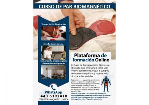 CURSO DE PAR BIOMAGNETICO