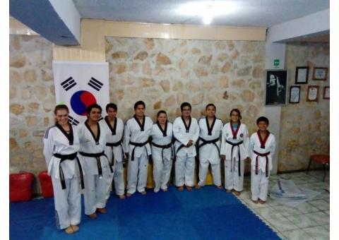 Taekwondo Morelia