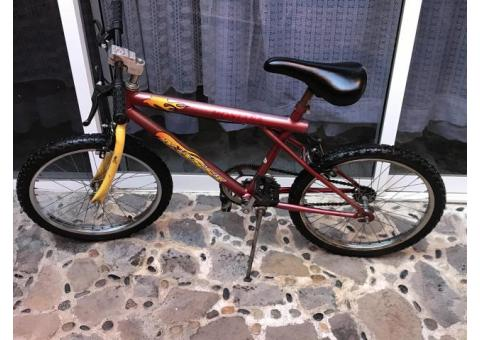 Bicicleta de Montaña ????♀️