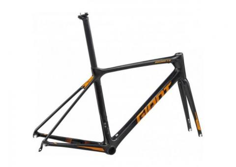 2019 Giant TCR Advanced Pro Frameset Road Bike - Fastracycles